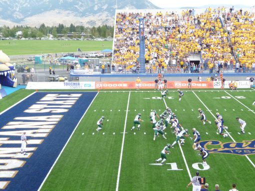Montana State University Bobcat Stadium Field Turf